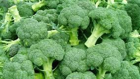 top 10 thực phẩm siêu giảm cân dễ kiếm.