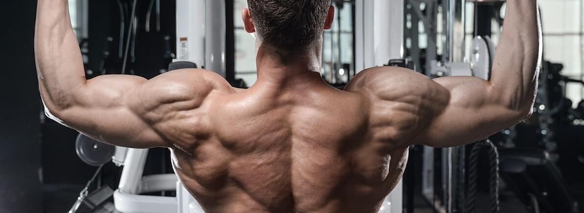 Cơ lưng xô là nhóm cơ lớn nhất của cơ thể. Vì vậy nên việc tập lưng xô vô cùng quan trọng, giúp bạn sở hữu tấm lưng dày, cân đối và khỏe mạnh