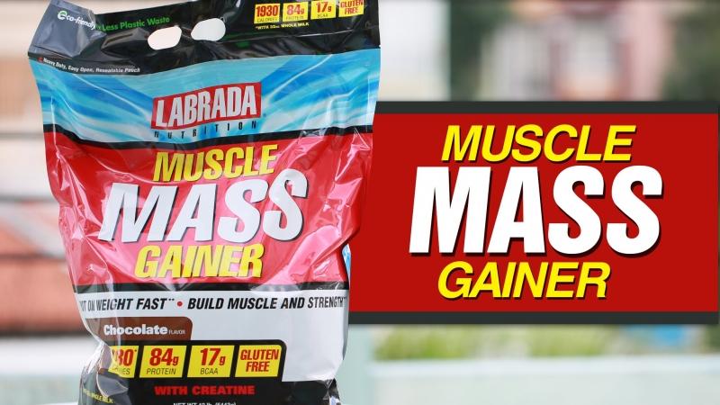 Mass Gainer là gì