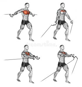 exercising-middle-low-cable-fly-bodybuilding-target-muscles-marked-red-initial-final-steps-66935758