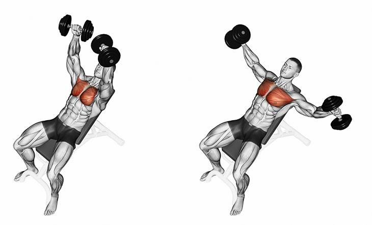 incline-dumbbell-flyes-exercise