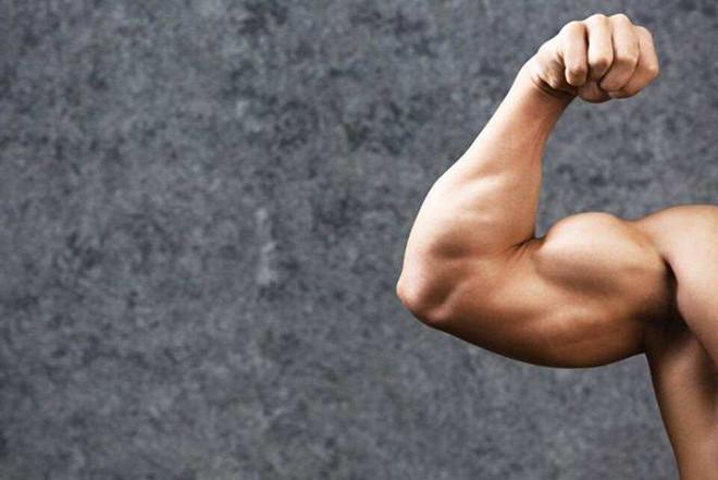 Tập Fitness là gì? Tổng hợp kiến thức cơ bản về Fitness 2