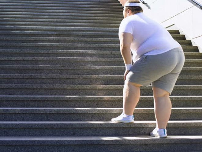 Tập Gym là gì ? Những lợi ích của tập Gym mang lại là gì ? 11