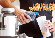 Whey Protein là một chát bổ sung giúp hấp thụ triệt để và nhanh chóng hơn. Lợi ích của Whey Protein được rất nhiều người dùng công nhận