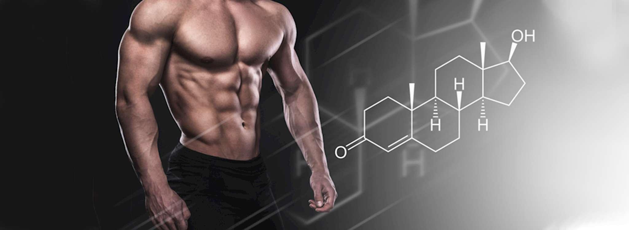 Những tác dụng của Whey Protein với người tập thể hình 6