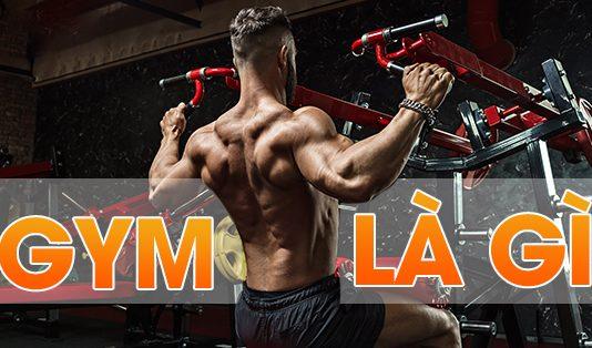 Tập Gym là gì ? Những lợi ích mà tập Gym mang lại là gì ?.