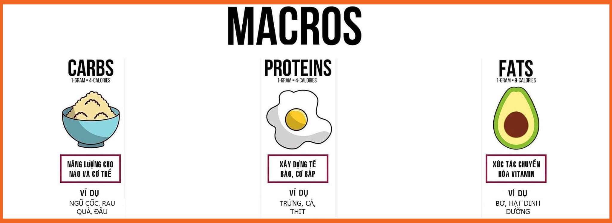 Hướng dẫn cách tính Macro nhanh và chuẩn nhất cho mọi chế độ ăn uống 1