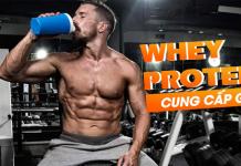 Tham khảo bài viết để biết thêm thông tin về các thành phần whey Protein nhé