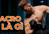 Hướng dẫn cách tính Macro chuẩn nhất cho các bạn có nhu cầu giảm cân, tăng cân, atwng cơ giảm mỡ.
