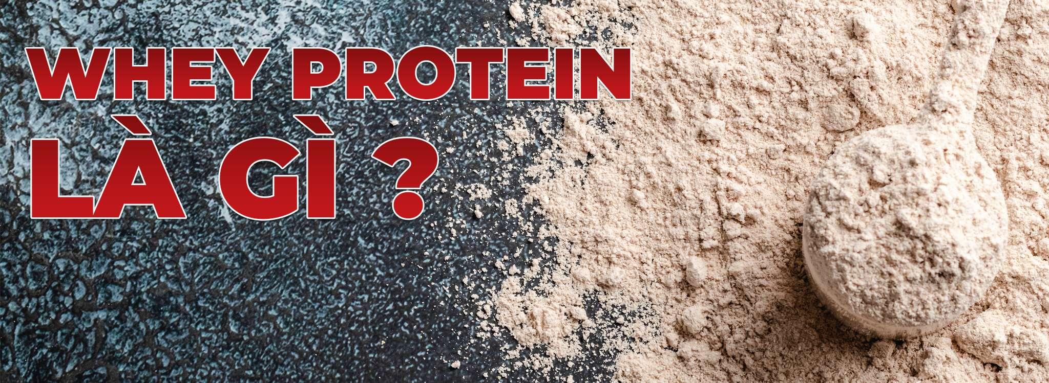 Tác hại của Whey Protein ảnh hưởng tới sức khỏe như thế nào ? Mời các bạn tìm hiểu nội dung bài viết dưới đây nhé!