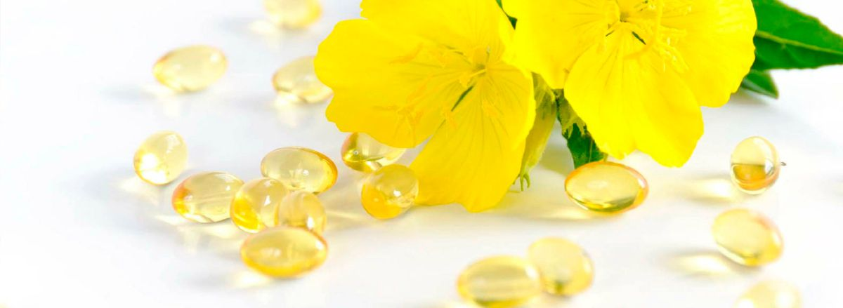 Bạn có biết 10 Lợi ích bổ sung tinh dầu hoa anh thảo với sức khỏe cơ không? Cùng tìm hiểu nội dung bài viết dưới đây nhé!