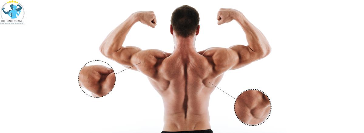 Rất nhiều nhiều bạn tập gym đều nghe tới khái niệm EAA giúp phục hồi cơ bắp. Vậy EAA là gì ? Nào? Công dụng của EAA là gì ? và Đánh giá so sánh EAA và BCAA...