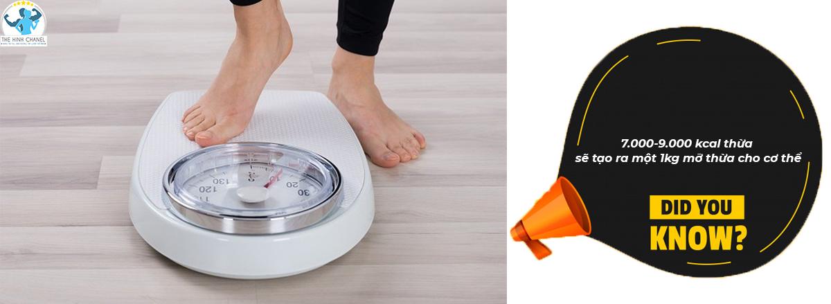 Bạn đã biết mối quan giữa calo và cân nặng của cơ thể là gì chưa? Tham khảo nội dung bài viết dưới đây để biết thêm chi tiết nhé!