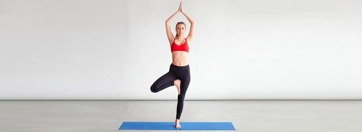 Tham khảo ngay 14 bài tập giãn cơ tăng chiều cao cho nam phổ biến nhất, giúp bạn phát triển chiều cao và cải thiện vóc dáng nhanh nhất...