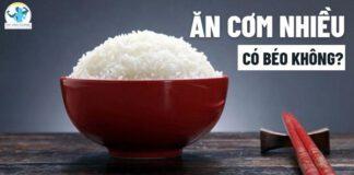 Ăn cơm nhiều có béo không? Nên ăn bao nhiêu cơm mỗi bữa?