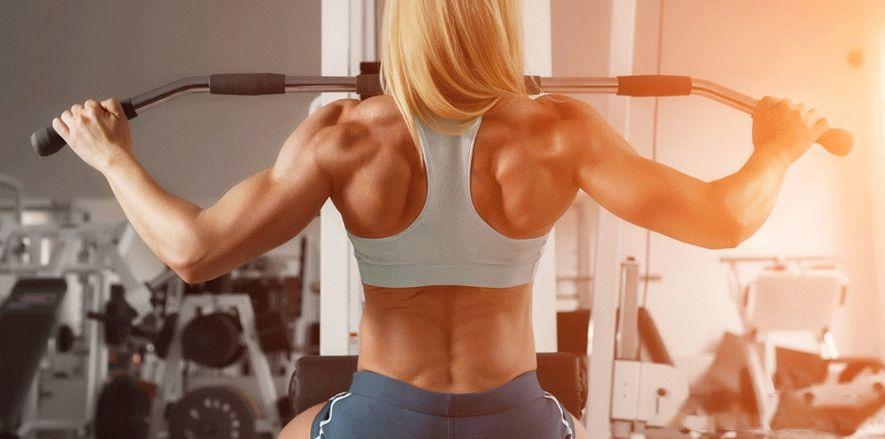 Tập gym cho nữ mới bắt đầu như thế nào? Những kiến thức cơ bản nhất cần biết là gì? Mời các bạn tham khảo qua chi tiết bài viết...Tập gym cho nữ mới bắt đầu như thế nào? Những kiến thức cơ bản nhất cần biết là gì? Mời các bạn tham khảo qua chi tiết bài viết...