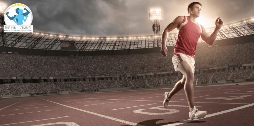 Bài viết này Thể Hình Chanel sẽ giúp bạn trả lời câu hỏi kỹ thuật chạy bền gồm mấy giai đoạn quan trọng? Yếu tố quyết định hiệu suất chạy bề...