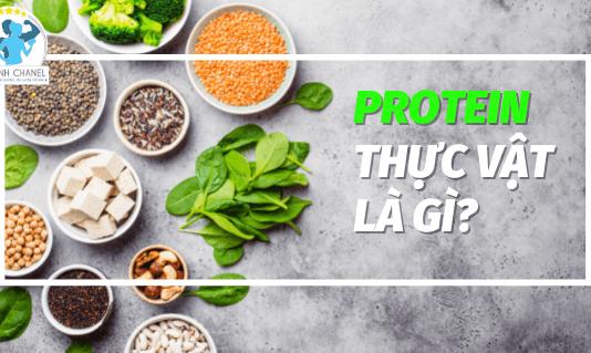 Bạn biết gì về nguồn Protein thực vật, và những lợi ích nó mang lại? Tham khảo ngay bìa viết cùng 50 thực phẩm giàu protein thực vật...