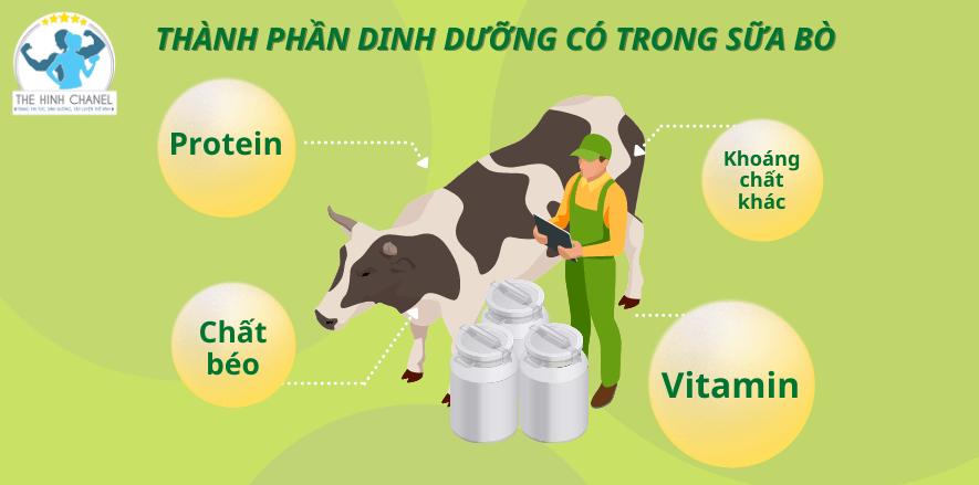 Nguồn dinh dưỡng dồi dào mà sữa bò mang lại khiến nhiều người thắc mắc rằng uống sữa bò có tăng cân không? Chúng ta cùng tìm hiểu qua nội dung bài viết.....