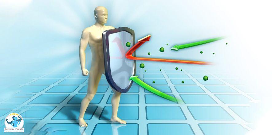 Lượng calo của xoài xanh là bao nhiêu? Ăn xoài chua xanh có giảm cân không ? Tìm ngay câu trả lời qua nội dung bài viết dưới đây cùng cách làm các món ngon...